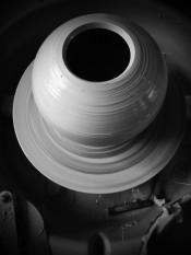 bw vase